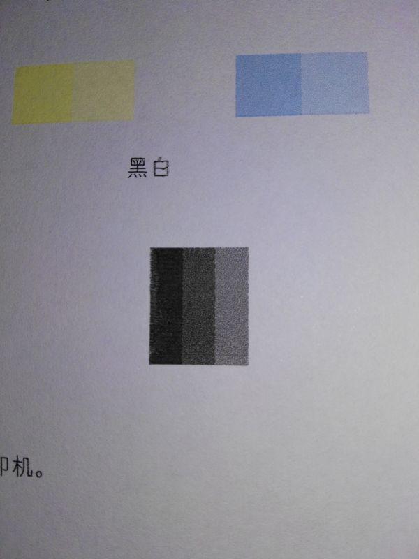 7cd6e891ca2ed44b (1).jpg